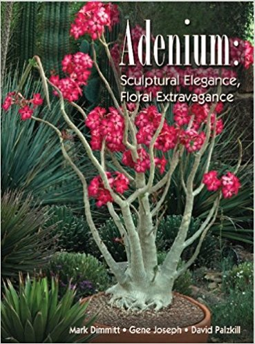 Cover of Adenium