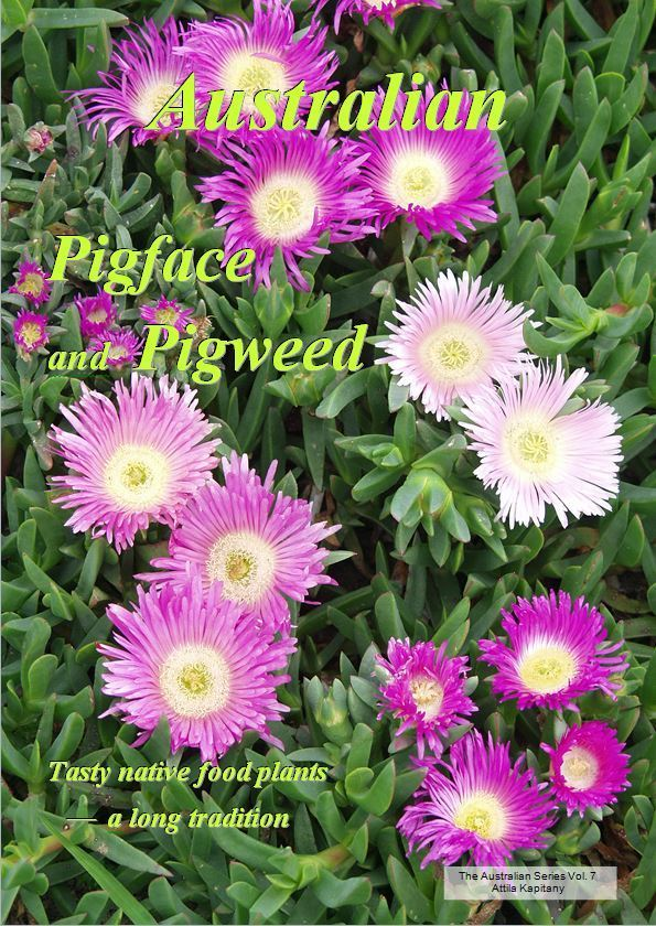 Cover of Australian pigface and pigweed