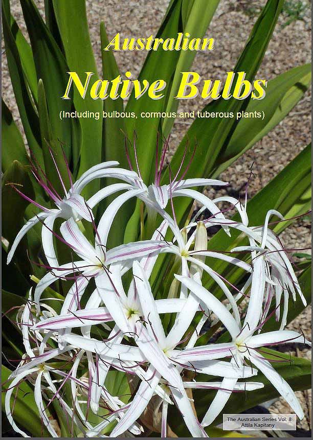 Cover of Australian native bulbs