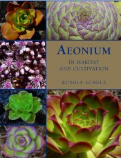 Cover of Aeonium